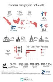 Indonesia Demographic Profile 2016 | Piktochart Infographic Editor