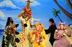 Image result for madagascar the musical
