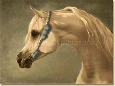Arabian Horse Art by Lesley Ann Hartman, specialising in Arabian Horse ...