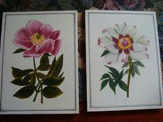 Flores pintee