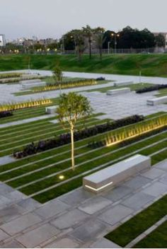 The college courtyard at the Israeli Ben-Gurion University is organized into structured strips of lawn and concrete.