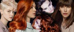 Roman Šnajdrvint – autorská kolekce účesů R1 – VLASY A ÚČESY Roman, Halloween Face Makeup