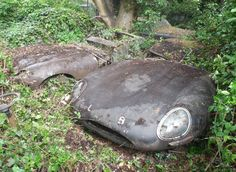 In The Hedge: Pair of Jaguar E-Types - http://barnfinds.com/in-the-hedge-pair-of-jaguar-e-types/