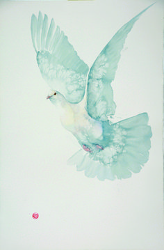 Karl Martens Dove (Unframed) (Hungerford Gallery) Signed Watercolour on Arches watercolour paper 59 x 39 in x cms Arches Watercolor Paper, Watercolor Bird, Watercolor Animals, Watercolor Paintings, Karl Martens, Frida Art, Wildlife Art, Painting Inspiration, New Art