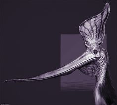 Pteranodon Sternbergi Study by Bryan Wynia | Creatures | 3D | CGSociety