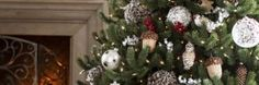 Get Ready for Christmas in Dallas with the Best Home and Garden Deals - http://dallas.miideals.com/blog/get-ready-for-christmas-in-dallas-with-the-best-home-and-garden-deals/