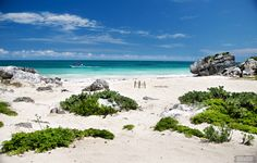 Tulum, Mexico >>>I really want to swim here!