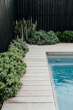 Backyard Pool Landscaping, Backyard Pool Designs, Small Backyard Pools, Pool Fence, Swimming Pools Backyard, Swimming Pool Designs, Outdoor Pool, Fence Around Pool, Courtyard Pool
