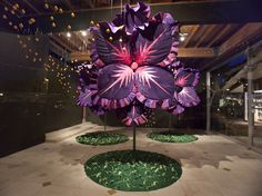 melissa martinez pollination - Google Search