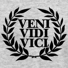 veni-vidi-vici-t-shirts-men-s-t-shirt-by-american-apparel.jpg (300×300)
