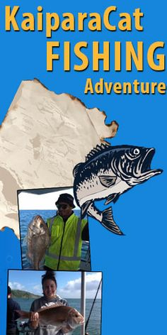 KaiparaCat Fishing Adventure Kaipara Cat fishing charter is holding a competition to win a one of two fishing trips for two out of Kaipara Harbour. Enter before January 31. #fishing #tall tale #Kaipara Cat