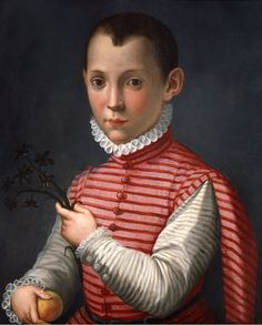 Portrait of a boy with a sprig of hyacinth and fruit by Mirabello Cavalori (1535-1572)