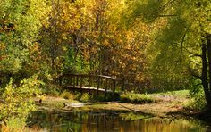 6 fall hikes within 60 miles of Milwaukee
