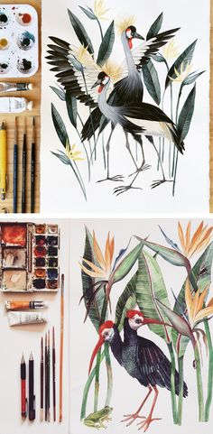 Illustrations by Georgina Taylor Vogel Illustration, Watercolor Illustration, Watercolor Paintings, Bird Drawings, Animal Drawings, Painting Inspiration, Art Inspo, Artist Sketchbook, Guache