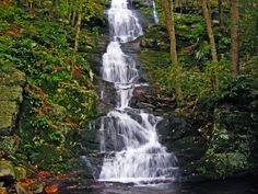 10 Best Hidden Gems in New Jersey Buttermilk Falls, Delaware Water Gap, Waterfall Hikes, State Forest, All Nature, Beautiful Waterfalls, New Jersey, Jersey Girl, Cool Places To Visit