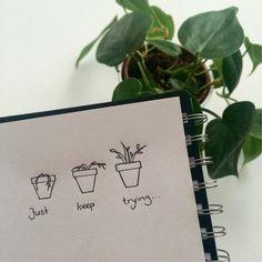 55 ideas plants aesthetic quotes, - site adı ve keyword Plant Aesthetic, White Aesthetic, Aesthetic Photo, Aesthetic Pictures, Plants Are Friends, Baguio, House Plants, Garden Plants, Aesthetic Wallpapers