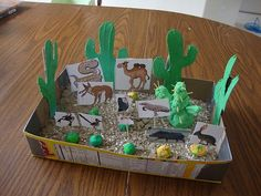 Desert Diorama- this would be great as team projects for the various habitats