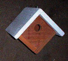 Goldfinch Bird House Plans | Crafts | Pinterest | Bird house plans ...