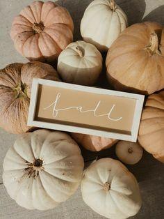 Cute Fall Wallpaper, Iphone Wallpaper Fall, Grey Home Decor, Fall Home Decor, Autumn Cozy, Autumn Aesthetic, Fall Pictures, Hello Autumn, Autumn Inspiration