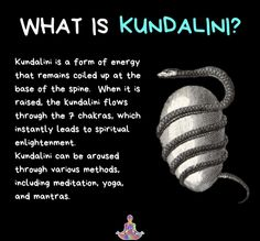 Kundalini is a very important topic that applies to ALL spiritual paths. All pat… Kundalini is a very important topic that applies to ALL spiritual paths. All pat…,Spiritual Kundalini is a very important topic. Spiritual Enlightenment, Spiritual Path, Spiritual Wisdom, Spiritual Awakening, Reiki, Kundalini Meditation, Kundalini Mantra, Spiritual Meditation, Mudras