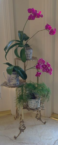 Love orchids with blue and white...