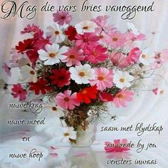 Good Morning Greetings, Good Morning Wishes, Good Morning Rainy Day, Lekker Dag, Afrikaanse Quotes, Goeie Nag, Goeie More, Morning Blessings, Special Quotes