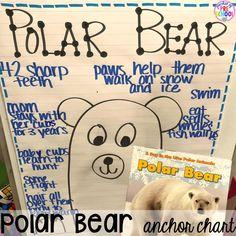 Polar animal themed activities and centers for preschool, pre-k, and kindergarten. Bridgetown, Cozumel, Artic Animals, Wild Animals, Baby Animals, Baby Pandas, Baby Giraffes, Baby Otters, Bears Preschool
