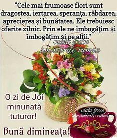 Joi, Good Morning, Plants, Buen Dia, Bonjour, Plant, Good Morning Wishes, Planets