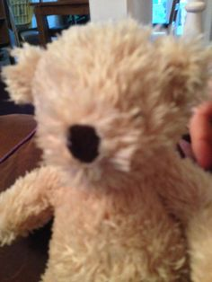 """this chap has been found """"We found ted! Thank you so much to Florence's amazing little friend Arabella and her mummy for finding her! X"""" ----- Lost on 20/07/2014 @ bluewater. Florence my one year old daughter lost her favourite teddy this afternoon at BlueWater shopping centre. he is light brown, with brown paws on his feet, 8.5 inches long, well loved, and has a big M&... Visit: https://whiteboomerang.com/lostteddy/msg/qhti6q (Posted by Charlotte on 20/07/2014)"""