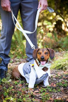 The most handsome little groomsman | Charity Maurer Photography