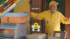 #apicoltura #Melario, #coprifavo #alimentatore #griglia escludi #regina #supergreen #weusetv