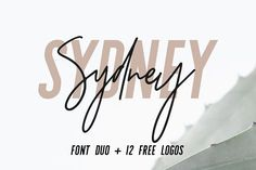 Sydney | Font Duo + 12 Free Logos by Jen Wagner Co on @creativemarket