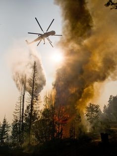 The Springs Fire, Banks-Garden Valley, Idaho, Boise National Forest, August, 2012