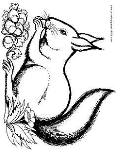 Squirrel, : Squirrel Eating Nut with Her Children Coloring Page ...