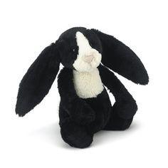 Bashful Dutch Bunny
