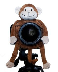 Shutter Huggers Monkey Shutter Hugger $20 - the monkey has been sold out for nearly a year.  I finally gave up and bought the tiger.  Works like a charm.