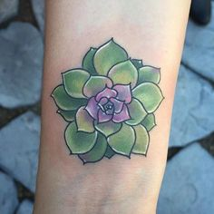 Succulent buddy by Chad Whitson at Bearcat Tattoo Gallery