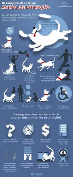 Os benefícios de se ter um animal de estimação All Dogs, I Love Dogs, Cute Dogs, Yorkshire Terrier, Animals And Pets, Cute Animals, Pet Vet, Pet Life, Animal Fashion