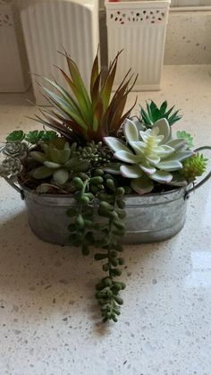 """Brighten your home with this pretty artificial succulent arrangement! The tin decor table centerpiece with its gorgeous variety of different faux succulents is the perfect year round decor. It will fit right in every room or space in your home and also makes for a great housewarming gift or host gift. Details: 🌸 Oval tin pot with handles - filled with a variety of faux succulents 🌸 Size: approx. 7"""" high x 9"""" l x 6"""" d Succulent Garden Ideas, Succulent Outdoor, Outdoor Flowers, Succulent Terrarium, Potted Succulents, Artificial Succulents, Succulents In Containers, Artificial Flowers, Succulent Centerpieces"""