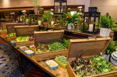 Salad Buffet at Hyatt Regency Atlanta