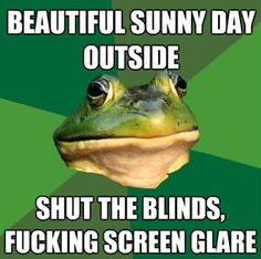 #FoulBachelorFrog #Funny #Meme