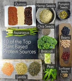 10 Of The Top Plant Based Protein Sources