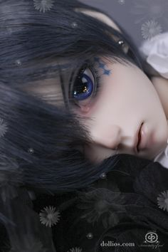 「Black Butler Book of Circus」Ciel Phantomhive ball jointed doll DOLKSTATION - Ball Jointed Dolls Shop - Shop of BJD Dolls