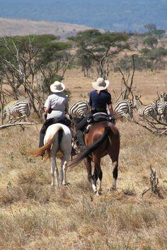 Randonnée à cheval dans la brousse tanzanienne avec les zèbres