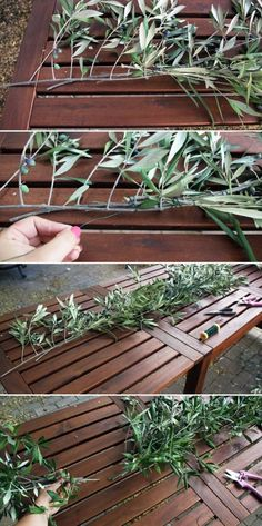 How to Make an Olive Branch Garland | Camp Makery