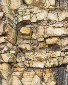 Carol Coleman - Large free-machine embroidery depicting part of the sea wall at Scarborough.