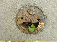 Google Image Result for http://chzhappychairishappy.files.wordpress.com/2010/08/objects-with-faces-delighted-drain-will-happily-accept-your-dirty-water.jpeg%3Fw%3D640