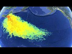 Fukushima: Lo que no nos dicen....