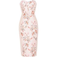 Stella McCartney Belli Dress ($2,065) ❤ liked on Polyvore featuring dresses, rose, sleeveless dress, rose dress, strapless floral dress, floral dresses and floral embroidered dress