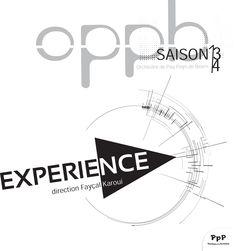 Orchestre de Pau - Pays de Béarn